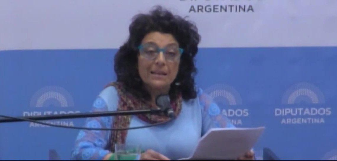 Laura Klein en Diputados